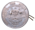 volunteered badge